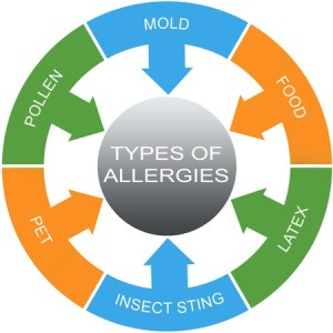 Allergy testing image, listing what allergies can be tested