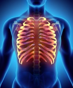 Chiropractic, rib cage image